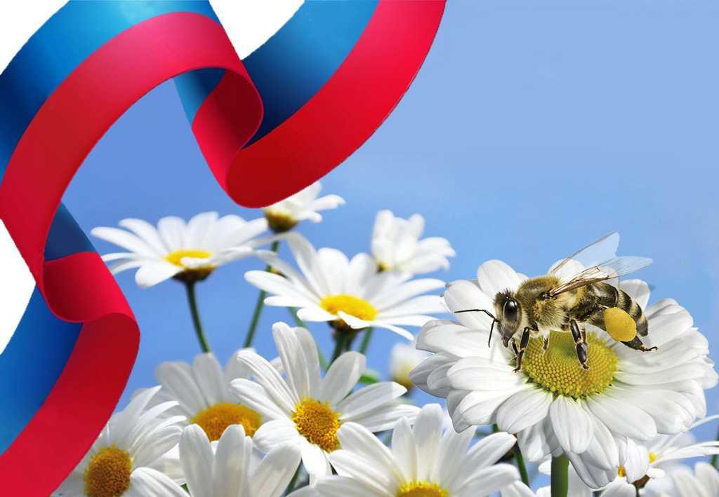 Россия. Признание в любви