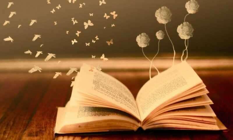 День вспоминания любимой книги