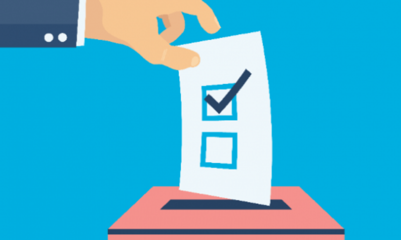 Эксперимент по дистанционному электронному голосованию