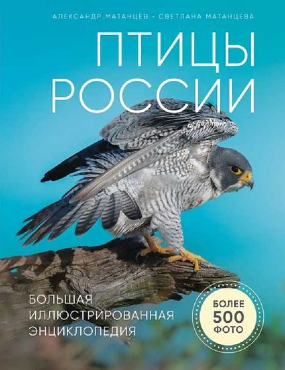10. Матанцев А.Н. Птицы России